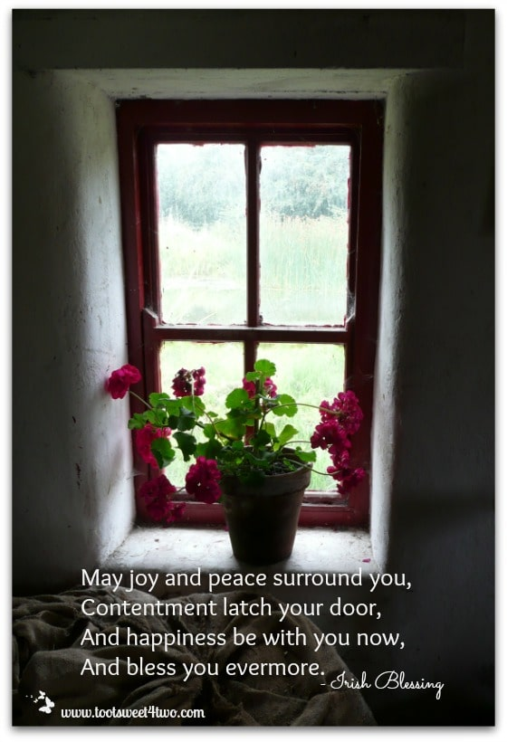 Joy and Peace Irish Blessing