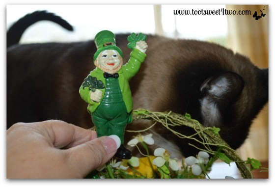 Making a shamrock and leprechaun centerpiece with Coco's help