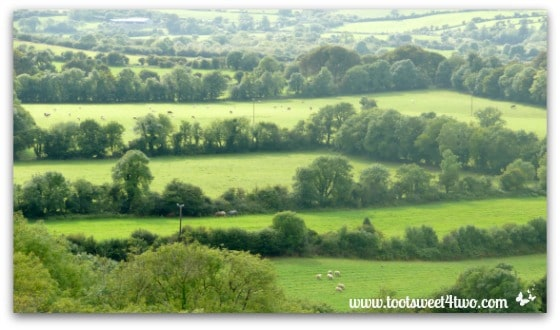 The rolling green hills of Ireland - 42 Shades of Green