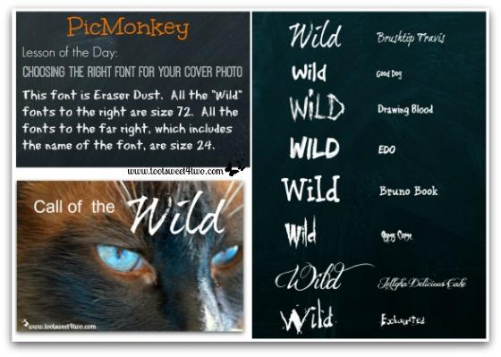 PicMonkey Font Lesson