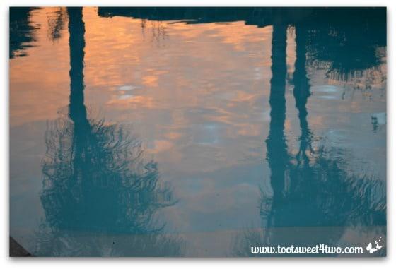 Sunrise pool reflections 2-2-14-647