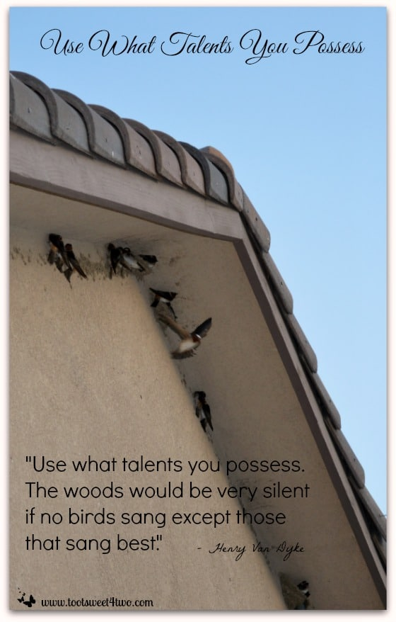 Use What Talents You Possess cover