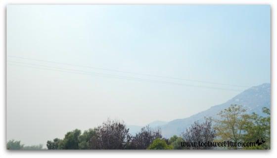 Smoke-filled, birdless sky - Alert are you Ready