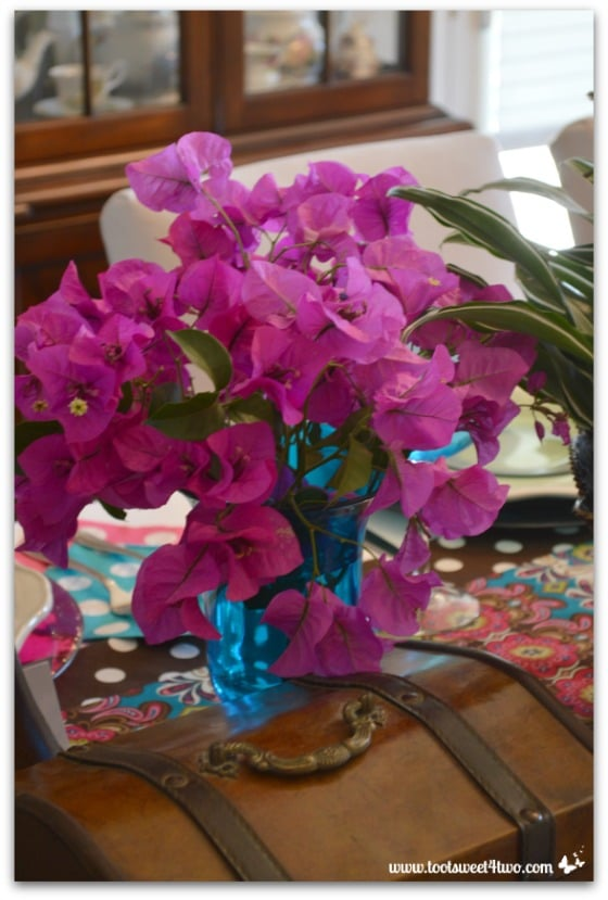 Bougainvillea from the garden for the Peacock table