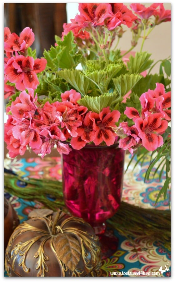 Geraniums from the garden for the Peacock table