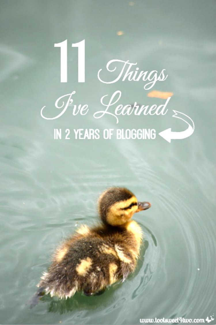11 Things I've Learned in 2 Years of Blogging cover