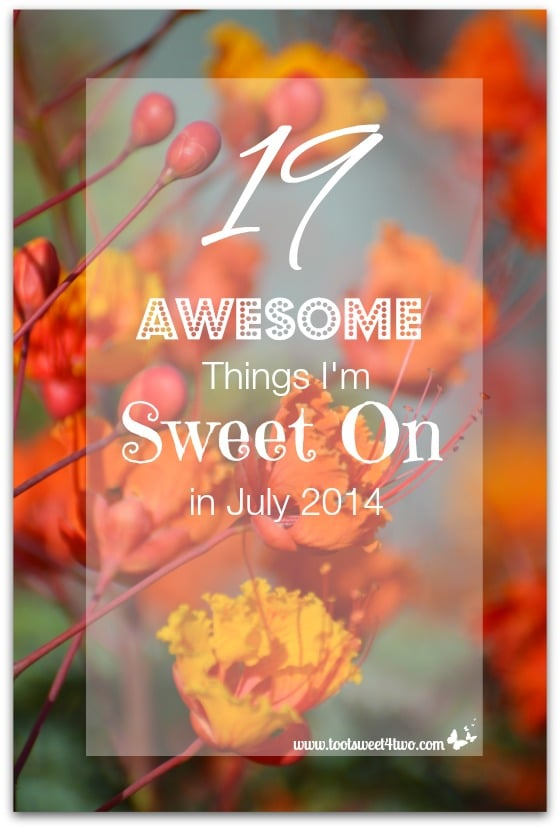 19 Awesome Things I'm Sweet On in July 2014 cover