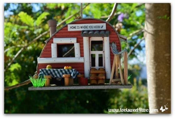 Camper birdhouse in Jacaranda tree - Ant Bait