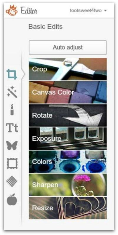 PicMoney Basics - Edit a Photo - PicMonkey Basic Edits Sidebar