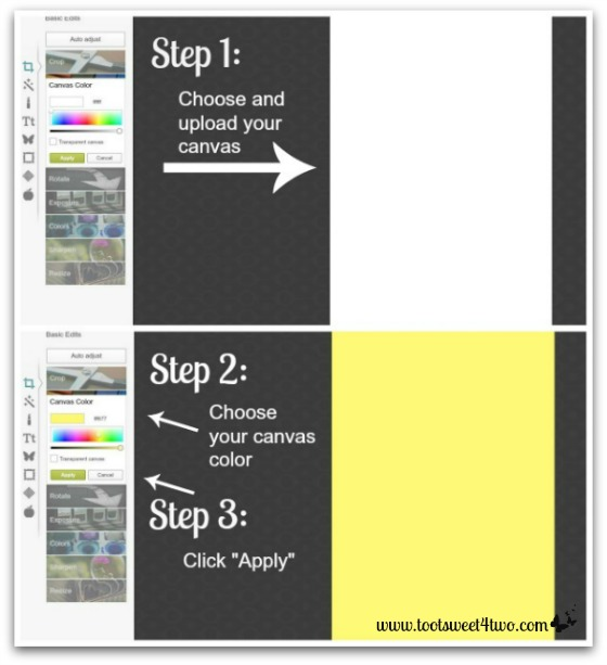 PicMonkey Basics - Design Your Own - Pic 2 - Upload canvas and add color
