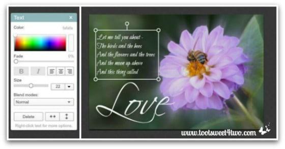 PicMonkey Basics - Edit a Photo - Pic 4 - Adding Text