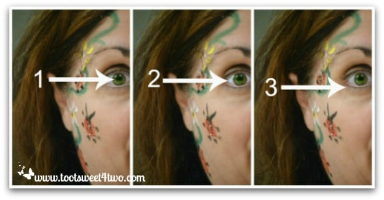 PicMonkey Basics - Touch Up a Photo - Pic 4 - Eye Color, Brightener, Liner