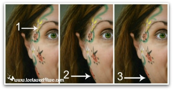 PicMonkey Basics - Touch Up a Photo - Pic 5 - Eyebrow, Weight Loss, Nip Tuck