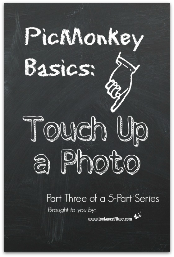 PicMonkey Basics - Touch Up a Photo cover