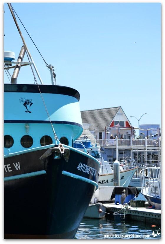 Antoinette and friends - Oceanside Harbor