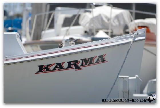 Karma and seagull - Oceanside Harbor