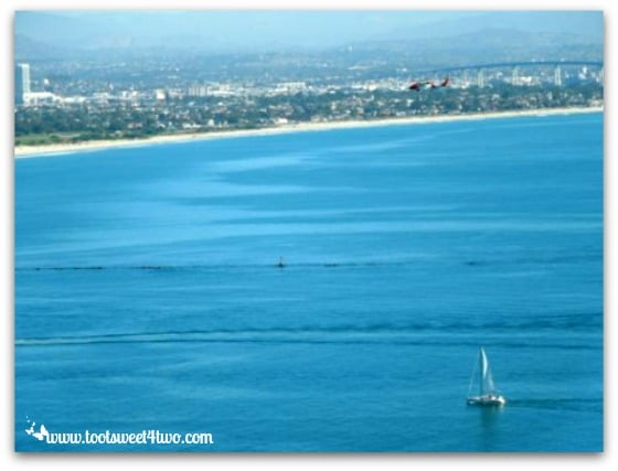 Love Leaves a Memory - sailboat carrying Dad out to sea and San Diego skyline
