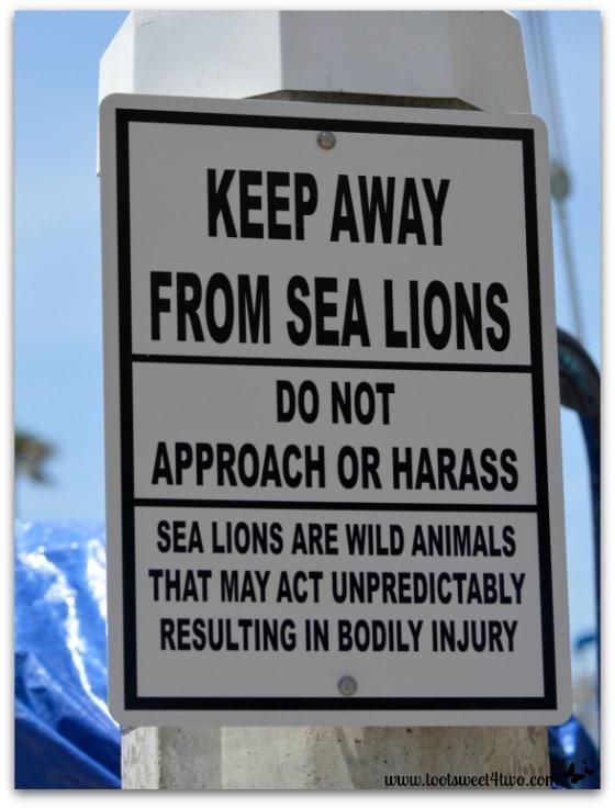 Sea Lion sign - Oceanside Harbor