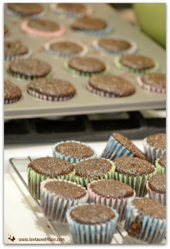 Bizzy's Mini Chocolate Cupcakes out of the oven