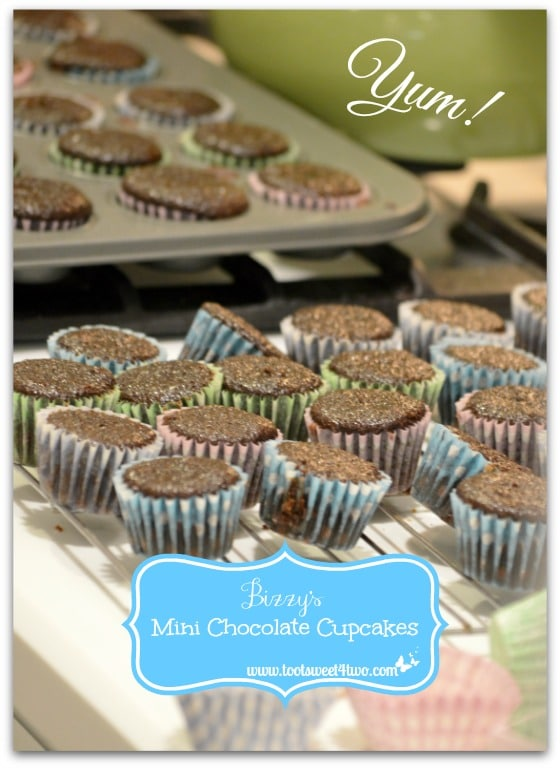 Bizzy's Mini Chocolate Cupcakes waiting for frosting