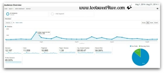 Google Analytics Audience Report August 2014