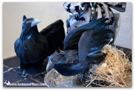 Crows in Nevermore Decorating for Halloween