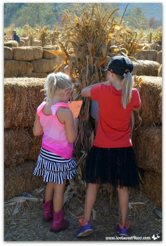 Mailbox at the straw maze