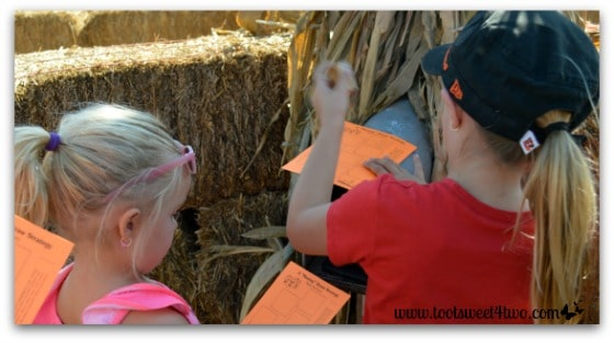 Stamping at the Straw Maze mailbox