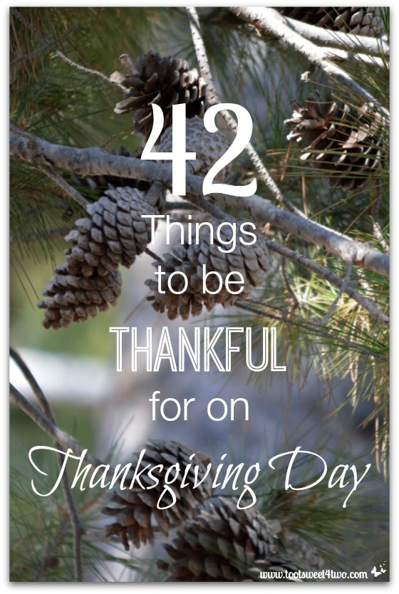42 Things to be Thankful for on Thanksgiving Day