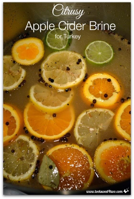 Citrusy Apple Cider Brine for Turkey