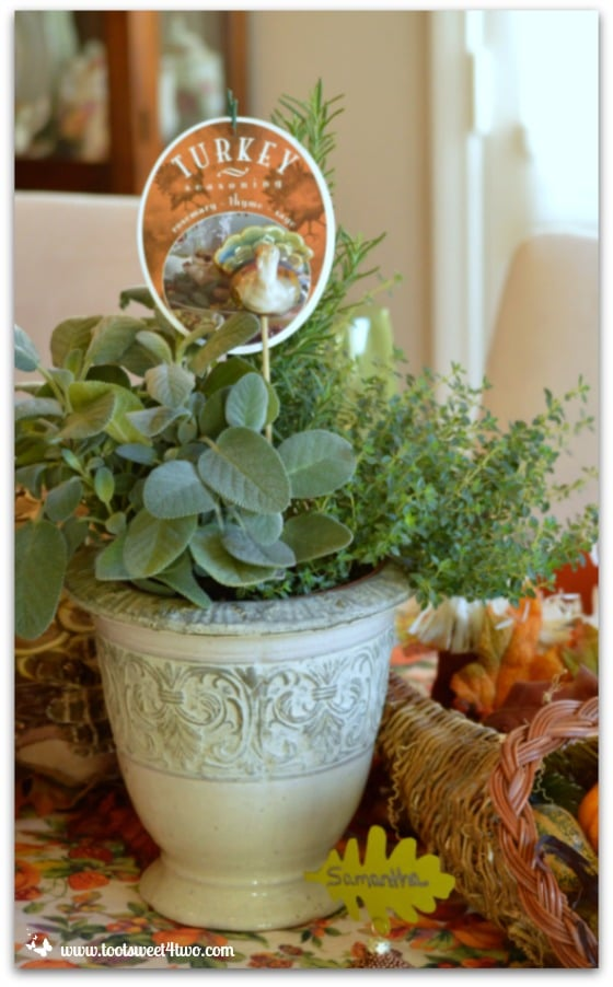 Turkey Seasoning plant