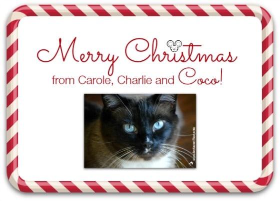 Merry Christmas card 2015