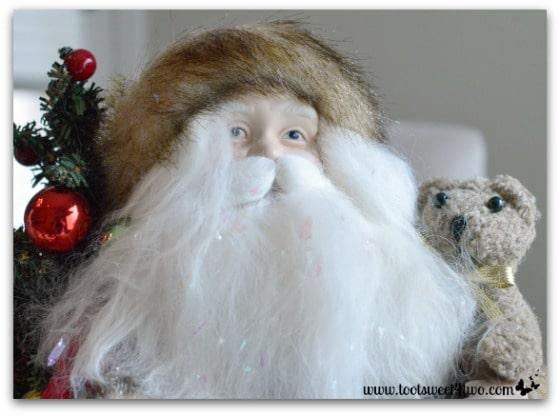 Santa and Teddy Bear close-up