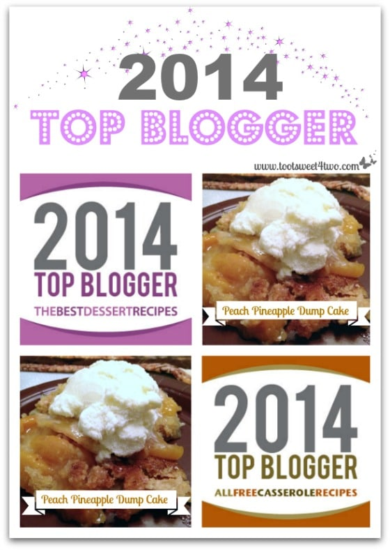2014 Top Blogger Award cover
