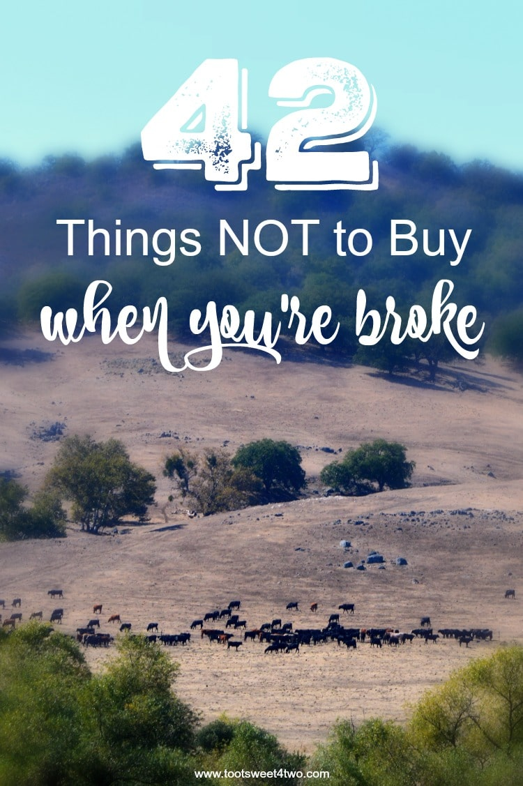 Have the holidays left you on the precipice of a financial cliff? Here are 42 things NOT to buy when you're broke and tips to replace them. | www.tootsweet4two.com