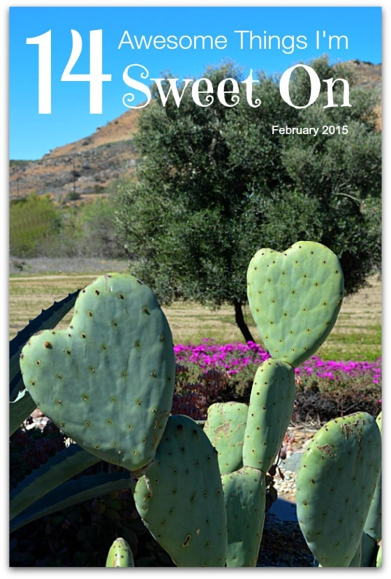 14 Awesome Things I'm Sweet On in February 2015 cover