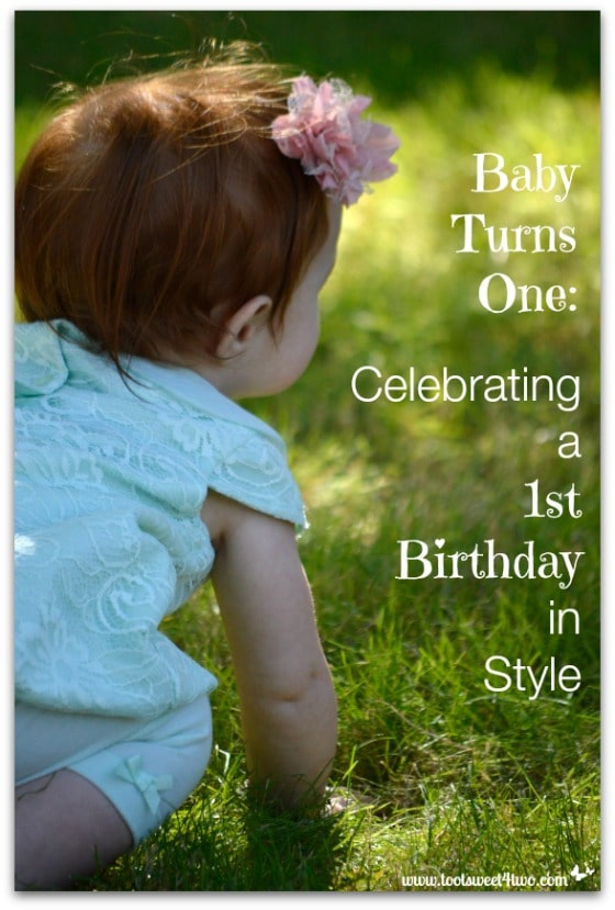 Baby Turns One - Celebrating a 1st Birthday in Style cover