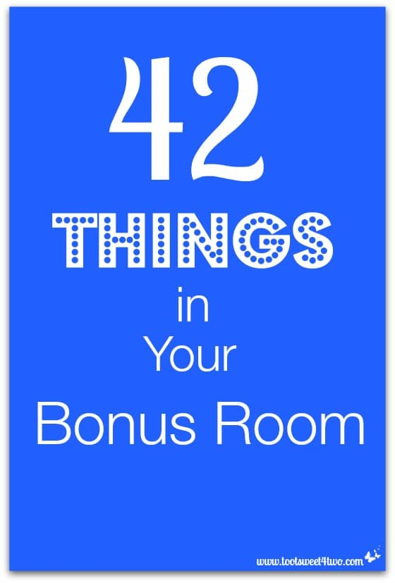 42 Things in Your Bonus Room cover