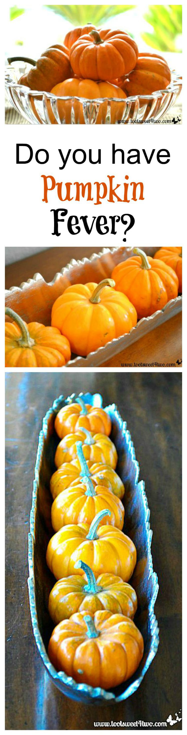 Do You Have Pumpkin Fever collage