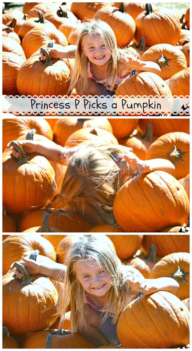 Princess P Picks a Pumpkin collage - decorating hack