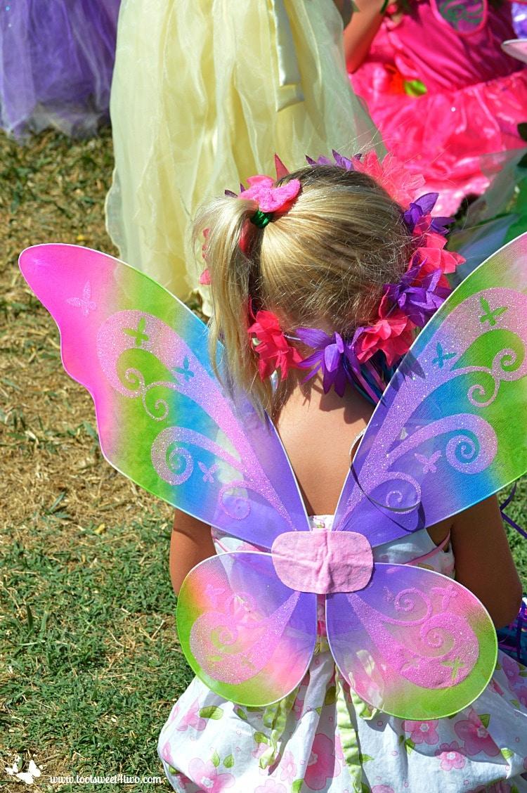 Princess Sweetie Pie's Fairy Wings