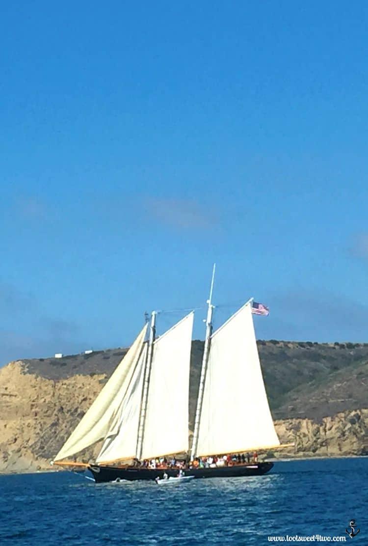 The America sailing past Pt. Loma, San Diego