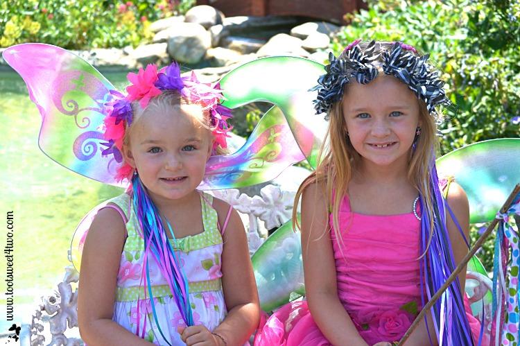 The Princess Fairies