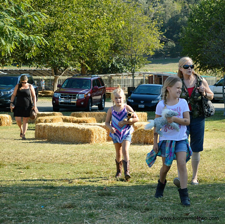 Arriving at the pumpkin patch 2015