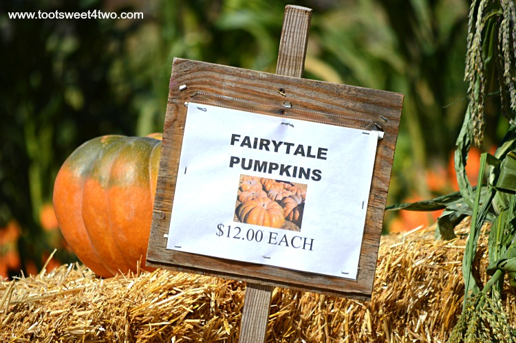 Fairytale Pumpkin sign