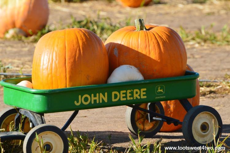 Howden Pumpkins in a John Deere wagon
