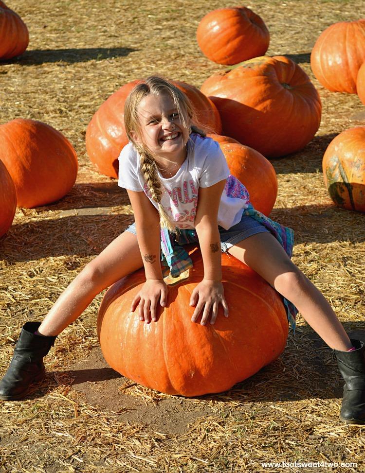 Princess P sitting on a Big Mac pumpkin 2015