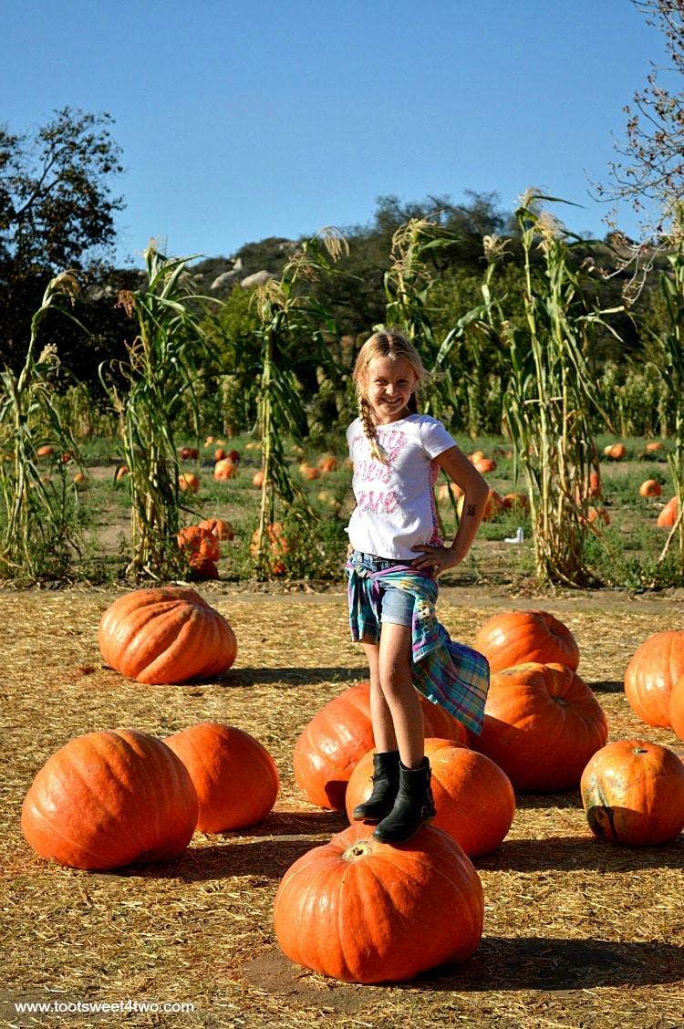 Princess P standing on a Big Mac pumpkin 2015