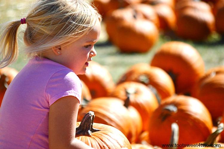 Princess Sweetie Pie chooses her pumpkin