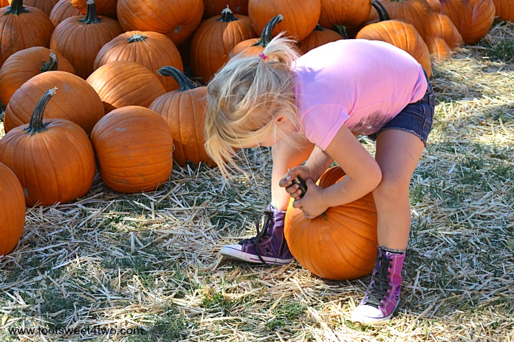 Princess Sweetie Pie grabbing the pumpkin's stem with both hands